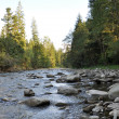Wild mountain river — Stock Photo