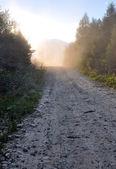 Dusty mountain road — Stock Photo