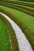 формальные сад — Стоковое фото