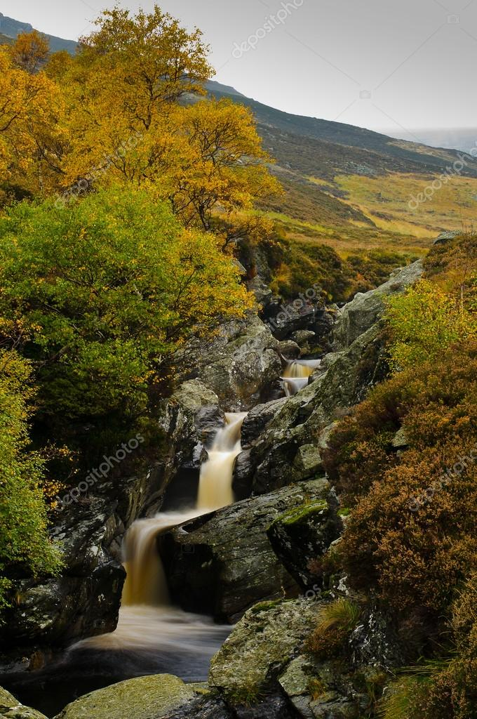 Scotland, Glen Lee, fall, autumn — Stock Photo #14345393