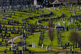 Aberdeen cemetery — Stock Photo