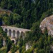 Stock Photo: Semmering Bahn viaducts