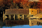 Autumn in Maine — Stock Photo