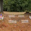 Vetern Grave — Stock Photo #14912027