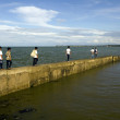 Boys Walking Seawall — Stock Photo