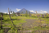 Mt. Mayon Volcano — Stock Photo