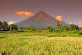 Mayon volcano — Stockfoto