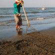 Raking Beach for Clams — Stock Photo