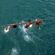 Boys On A Rope -  