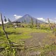 Mount Mayon Volcano - Stock Photo