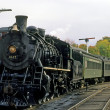 Steam Locomotive Train — Stock Photo #21258995