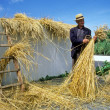 Man Thatching Straw — Stock Photo