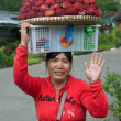 Woman Selling Rambutan Fruit — Stock Photo