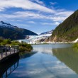 Glacier bay in alaska — Foto Stock