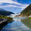 Glacier Bay in Alaska — Stock fotografie