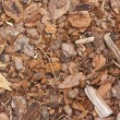 Mulchy mulch — Stock Photo