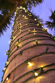 Palm tree with lights — Stock Photo