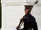 Soldier patrols tomb — Stock Photo