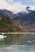Aljašský voda — Stock fotografie