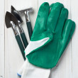 Garden tools and gloves — Stock Photo #20463595