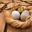 Three quail eggs in a nest — Stock Photo