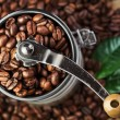 Closeup coffee beans with green leaf in coffee grinder — Stock Photo