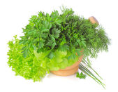 Green herbs in a pounder isolated on white background — Stock Photo