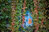Trochę graffiti w berlinie z jesiennych bluszcz — Zdjęcie stockowe