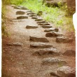 Stock Photo: Grunge image of pathway in the forest