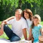 Happy family having picnic — Stock Photo #15530051