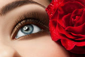 Woman eye with make-up — Stock Photo