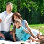 Happy family having picnic — Stock Photo #17632223