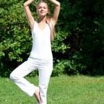 Woman doing yoga meditation — Stock Photo #17641817