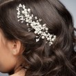 Stock Photo: Pearl hair accessory