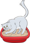 Cat in the tray — Stock Vector