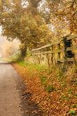 秋の田舎 — ストック写真