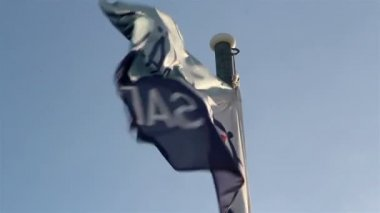 A waving flag on the pole — Stock Video