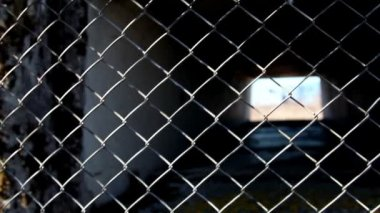 The metal wire fence — Stok video