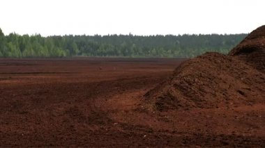 The view of the red peat soil — Stock Video