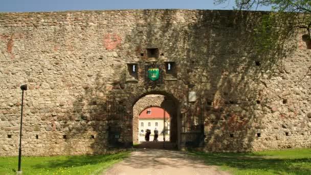 La porte d'un vieux château — Vidéo