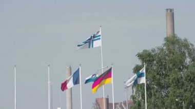 Set of European flags waving  FS700 Odyssey 7Q — Wideo stockowe