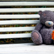 Teddy bear on a bench — Stock Photo