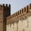 The medieval wall & tower — Stock Photo #14483547