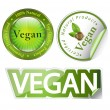 Royalty-Free Stock Photo: Vegan label set