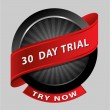 30 days trial design element - Stock Vector