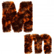 Animal fur decorative alphabet - Foto de Stock