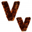 Animal fur decorative alphabet — Stock Photo