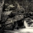Algonquin falls — Stock Photo