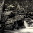 Stock Photo: Algonquin falls