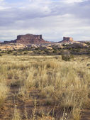 Arizona canyons — Stock fotografie